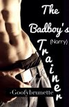 The Badboy's Trainer ~ Narry AU cover