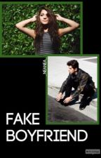 Fake Boyfriend by _neanea_