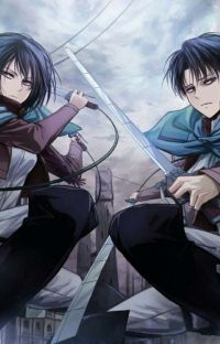 Levi x Mikasa  cover