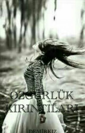 ÖZGÜRLÜK KIRINTILARI by meripos