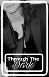 Through The Dark [H.S] cover