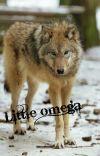 Little omega cover