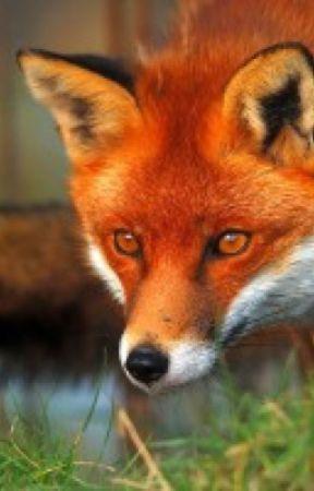 The Fox Mate by pavtdoom1996