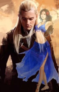 A special gift and an unexpected discovery (Legolas fanfic) cover