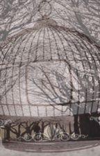 The Cage by GemCavan