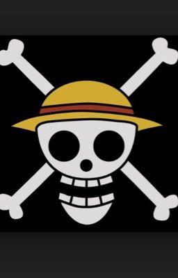 One Piece x Reader