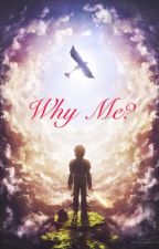 Why Me? (Older Hiccup and Reader) by happy_sherbert