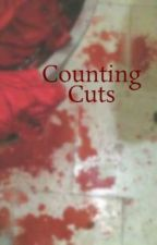 Counting Cuts by talktoomuch