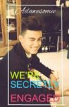 We're Secretly Engaged [Bailey May Fanfict] cover