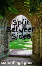 Split Between Sides by scribblingstylus