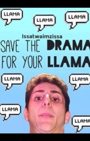 Twaimz the Llama by spacedorito_