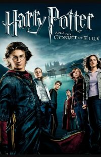 The Fifth Champion, Harry Potter Year 4 cover