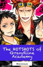 The hotshots of Grandline Academy (One Piece fanfic) BOOK 1 by ___onepiecewriter___