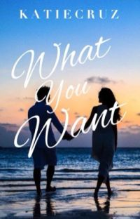 What Vincent Wants cover