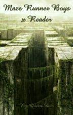 Maze Runner Boys x Reader by QueenShota
