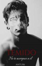 Temido by Antu06