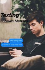 Texting Shawn Mendes by thegayison_