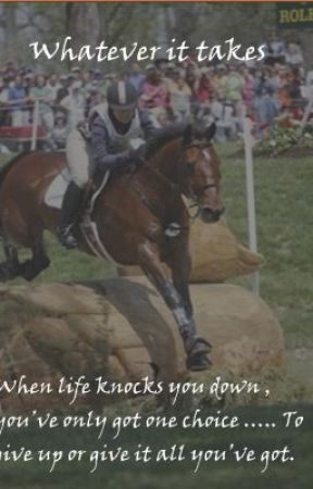 whatever it takes ~equestrian story~ by megansonador