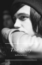 The Stray || Kellic ✔ by kelliclashton