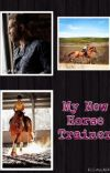 My New Horse Trainer cover