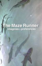 The Maze Runner ~ Imagines & Prefrences by pureyoongism