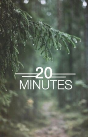 20 minutes  by sternalissa