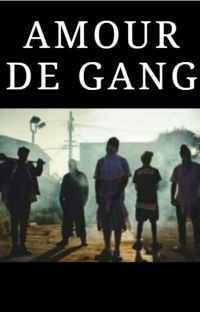 Tome 1: Amour de Gang cover