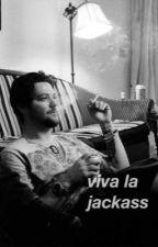 Viva La Jackass - bam margera by adidaaz
