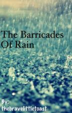 The Barricades of Rain by thebravelittletoast