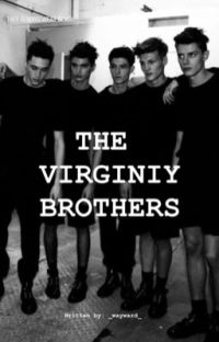 The Virginity Brothers cover