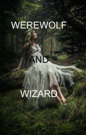 Werewolf dan Wizard by rafamaisa