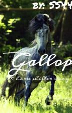 Gallop, a horse shifter story by shapeshifter44