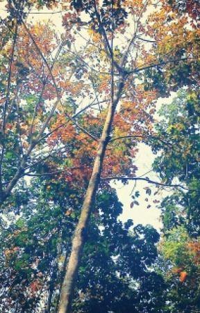 Kumpulan Puisi by madnwar