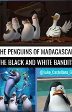 The Penguins of Madagascar-The Black and White Bandits by Luke_Castellans_Girl