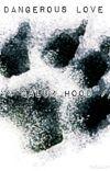 Dangerous love \\ Calum Hood fanfiction //[#Wattys2016] cover