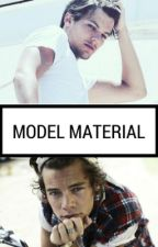 Model Material- Larry Stylinson by rainbow_hersh