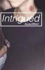 Intrigued// l.h by AyyeClifford