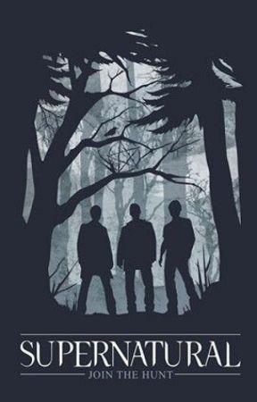 Supernatural Imagines by gib_gab22