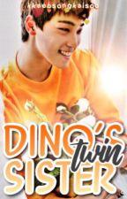 dino's twin sister ➳ seventeen by kkaebsongkaisoo
