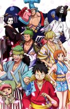 One Piece x Reader Oneshots (NO REQUESTS) by Vizkopa