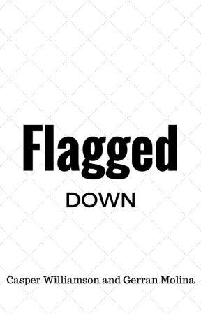Flagged Down by matrixlog