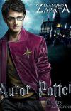 Auror Potter e o Mestre dos Disfarces cover