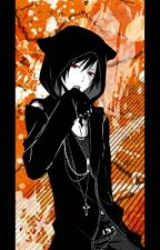 Vampire Knight: Another Hunter by ShihoFujioka