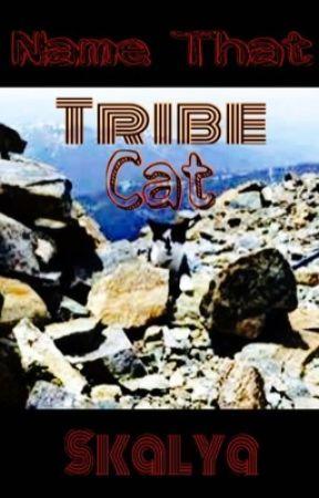 Name That Tribe Cat by Skalya