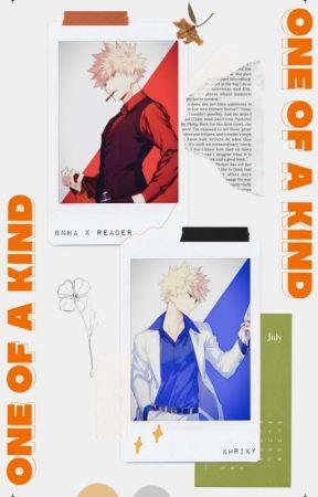 One Of A Kind [BNHA]  by KHRIky
