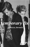 Temporary fix-Narry cover