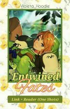 Entwined Fates | Link × Reader (One Shots) by Violeta_Hoodie