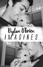 Dylan O'brien × Imagines by obrienastic
