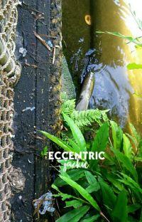 Eccentric cover