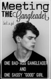 Meeting the Gangleader cover